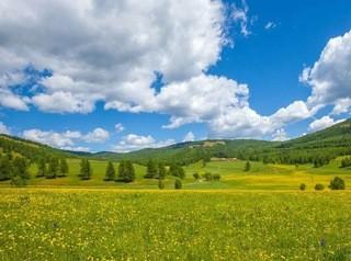 Дальневосточный гектар можно получить в 35 километрах от Улан-Удэ