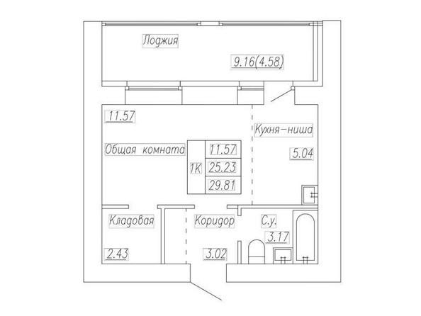 Планировка 1-комн 29,81, 30 м²