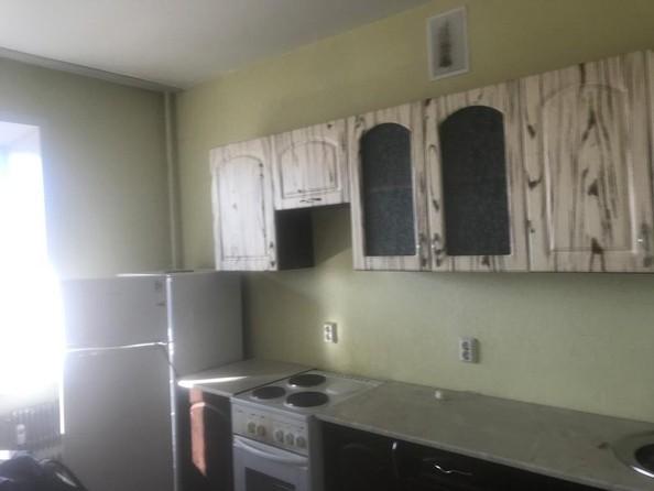 Сдам в аренду 1-комнатную квартиру, 50 м², Барнаул. Фото 4.