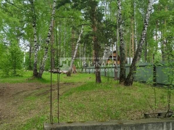 Продам  участок ИЖС, 15 соток, Елыкаево. Фото 4.