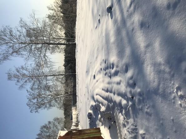 Продам  земельный участок, 10 соток, Томск. Фото 2.