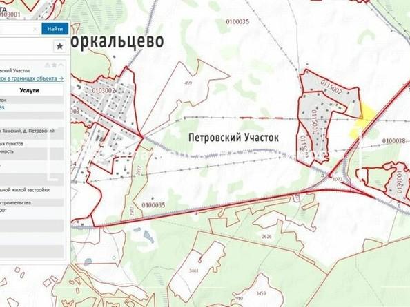 Продам  земельный участок, 62000 соток, Петровский Участок. Фото 2.